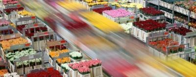 De Winter Logistics selecteert EuroTracs